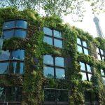 Jardín Vertical: Cómo hacer un Jardín Vertical