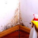 Humedad en Casa – Cómo quitar la humedad en Casa