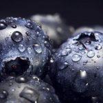 Cómo quitar la humedad por condensación